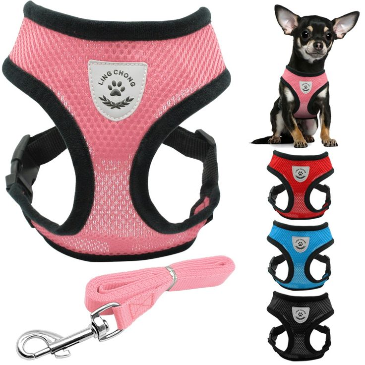 Soft Breathable Air Nylon Mesh Puppy Dog Pet Cat Harness and Leash Set    21.67, 12.99  Tag a friend who would love this!     FREE Shipping Worldwide     Buy one here---> https://liveinstyleshop.com/new-soft-breathable-air-nylon-mesh-puppy-dog-pet-cat-harness-and-leash-set/    #shoppingonline #trends #style #instaseller #shop #freeshipping #happyshopping