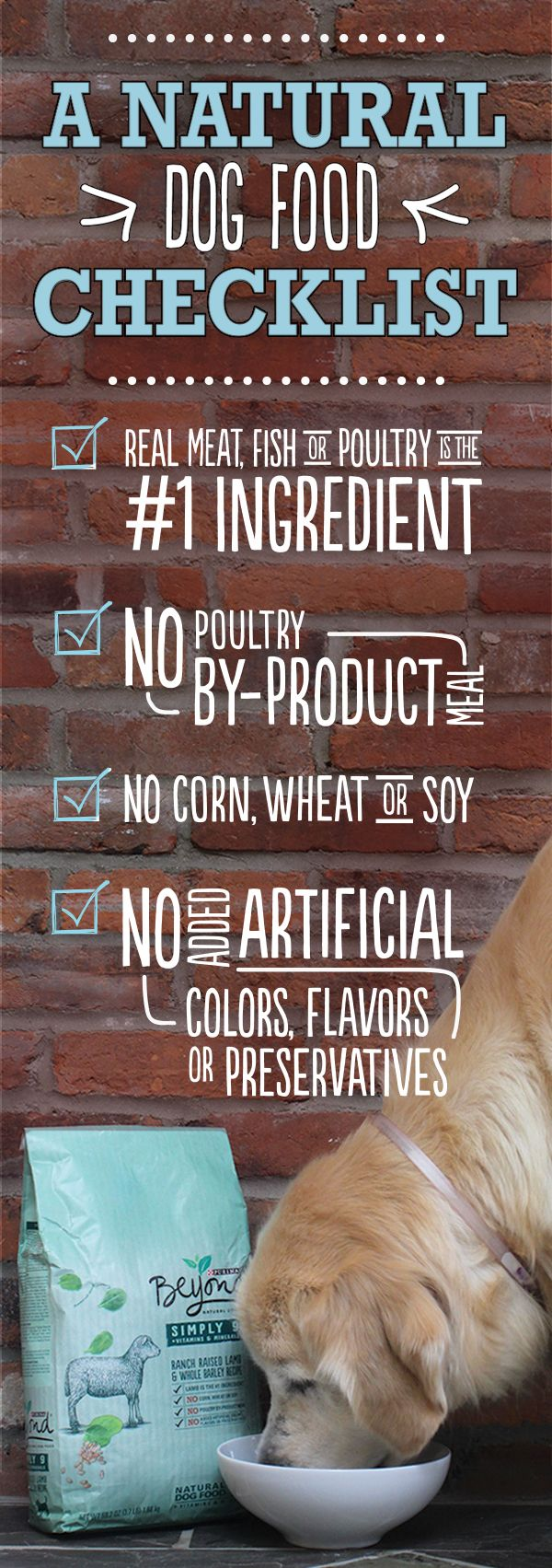 Looking for a healthy dog food? Make sure the ingredients are natural and the label starts with a high-quality protein source. But you should also check to see how the food goes beyond—Ask if a pet nutritionist creates the recipe. And find out if ingredients are sourced using thorough safety and quality checks.