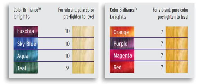 Ion Color Brilliance Brights - Black Hair Media Forum - Page 1