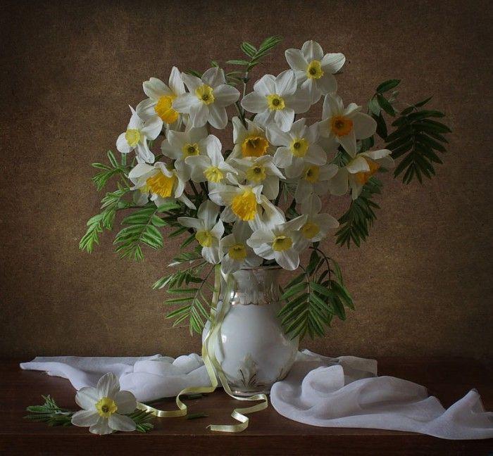 фотографии цветов -14-14