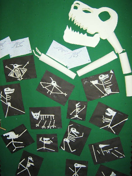 Dinosaur skeletons from Sue