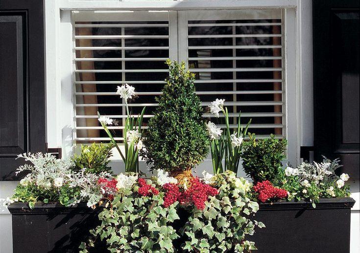 148 besten balkon bilder auf pinterest pflege balkonk sten bepflanzen und haus au endesign. Black Bedroom Furniture Sets. Home Design Ideas