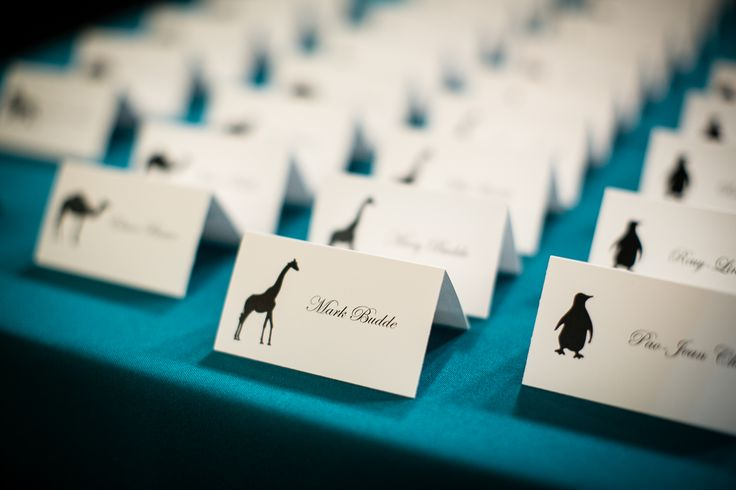 Zoo theme, place cards. Instead of table numbers, used table animals | St Louis Wedding | Zoo Wedding