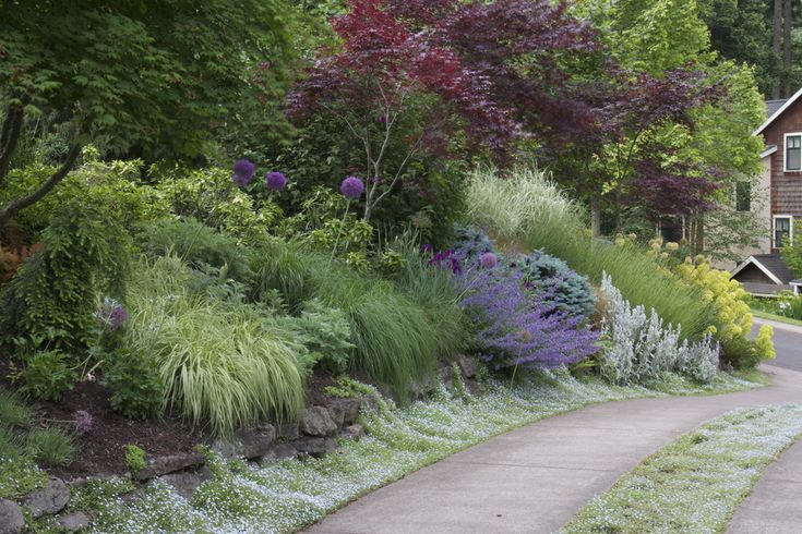 Massed shrubs and trees alongside driveway from mosaic for Mosaic landscape design