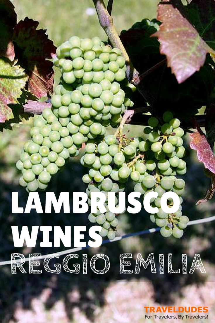 An Encounter with Amazing Lambrusco Wines, Reggio Emilia | My first encounter with the Lambrusco red wine from northern Italy.. bright, ruby-hued, food-friendly, fragrant, fruity, and slightly sparkling (in Italian, frizzante), delightfully tasty! | Travel Dudes Social Travel Community