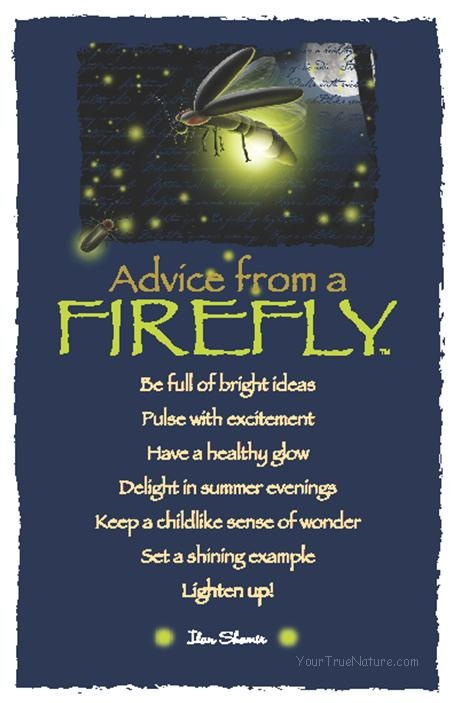 Advice from a Firefly