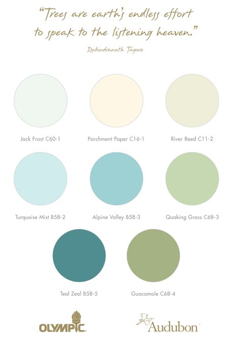 Aqua Paint Colors best 25+ olympic paint ideas on pinterest | bedroom paint colors