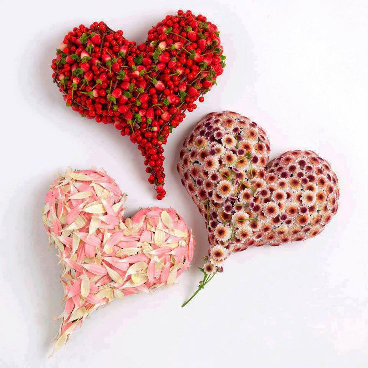 Valentine's day-Flower and strawberry hearts