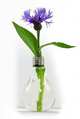 Leuke originele vaas om je bloemen in het licht te zetten - www.designjunky.nl