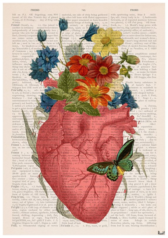 Winter Sale 10% off Pink Flowery Heart Human Anatomy by PRRINT
