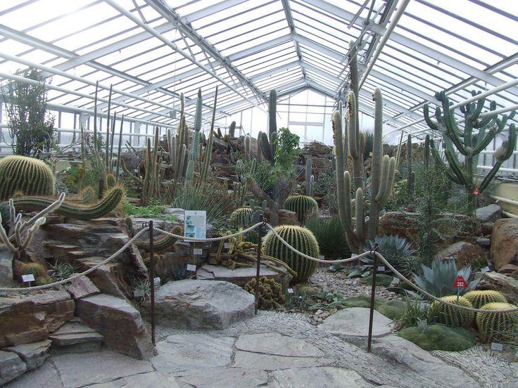 Cute Book your tickets online for Botanischer Garten Muenchen Nymphenburg Munich See reviews