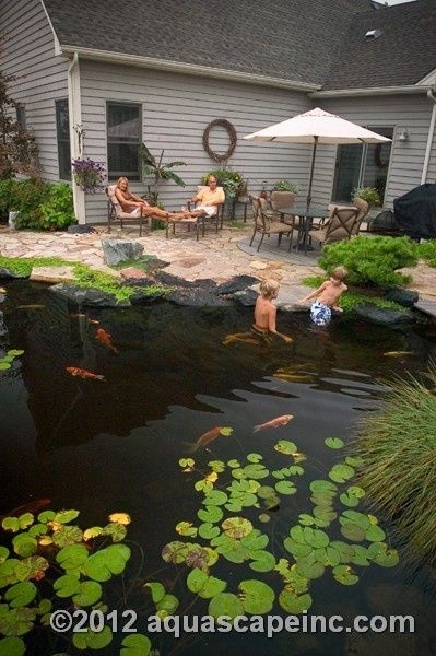 Backyard Pond - Pool Alternative. Easier to make and cheaper to maintain. No chemicals.  Naturally clean the water through algae- eating plants and a simple pump.