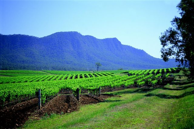 Hunter Valley, South Australia