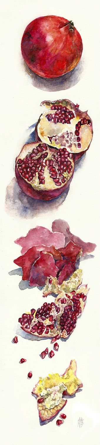 by ~ayjaja on deviantART- Beautiful watercolor. I love eating pomegranates. Pink stained finger fun