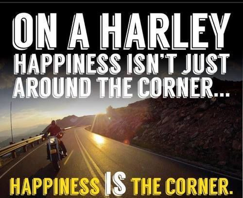 Harley Davidson Quotes 61 Best Bikes Humorhorrorprayer Images On Pinterest  Bike Humor