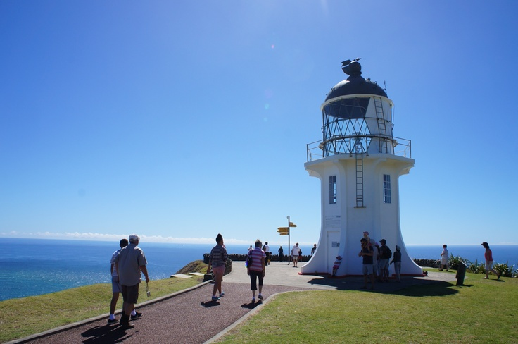Top of NZ