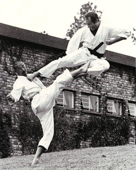 Tanaka & Schmidt