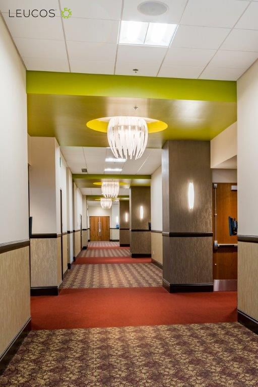 #Dracena by Diego Chilò: #Leucosproject for Boise Centre, #Boise - Idaho (USA). Designer: Babcock Design Group  #Leucoslovablelamps Visualizza traduzione