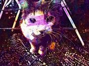"New artwork for sale! - "" Cat Pet Green Eyes Ragdoll Cat  by PixBreak Art "" - http://ift.tt/2h9ZtgD"