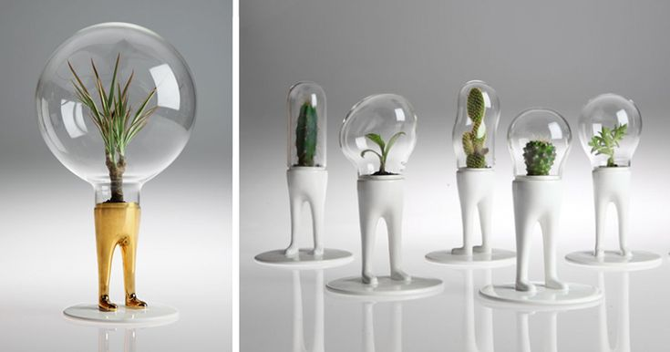 Obviously, the #1 problem facing gardeners today is that their plants don't have legs. Luckily, Milan-based designer Matteo Cubic has changed all of that with his bizarre series of DOMSAI terrariums, which feature legged plants encased in glass bubble that make them look like alien space invaders.