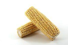 Céréales, Le Maïs, Des Cultures, Manger