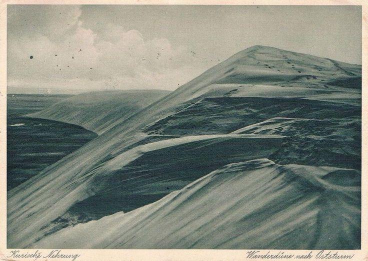 Kurisches Nehrung - Wanderdüne nach Oststurm um 1935