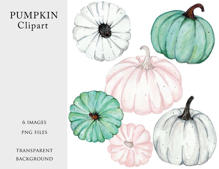 Excited to share the latest addition to my #etsy shop: 6 Pumpkin Cliparts, Green, White and Pink Pumpkin, Winter Pumpkins, PNG files