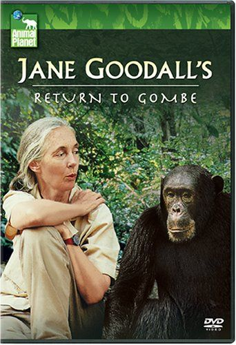 17 best images about jane goodall on pinterest