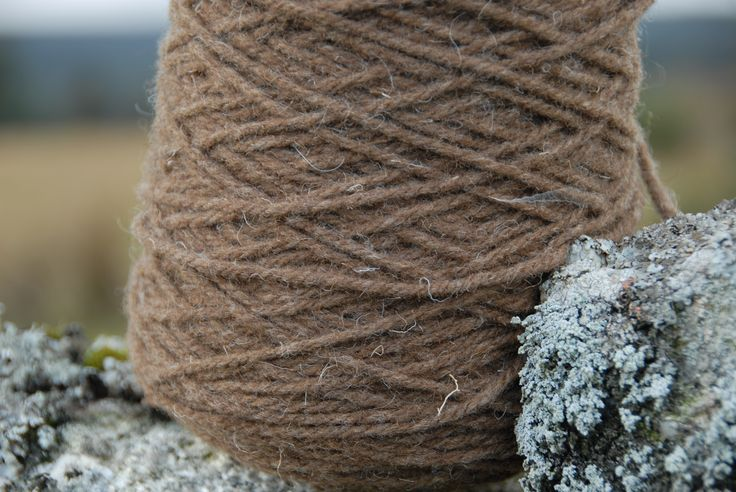 Pure, natural, chunky yarn from the distinctive, milk chocolate brown fleece of my Castlemilk Moorit rare breed British sheep