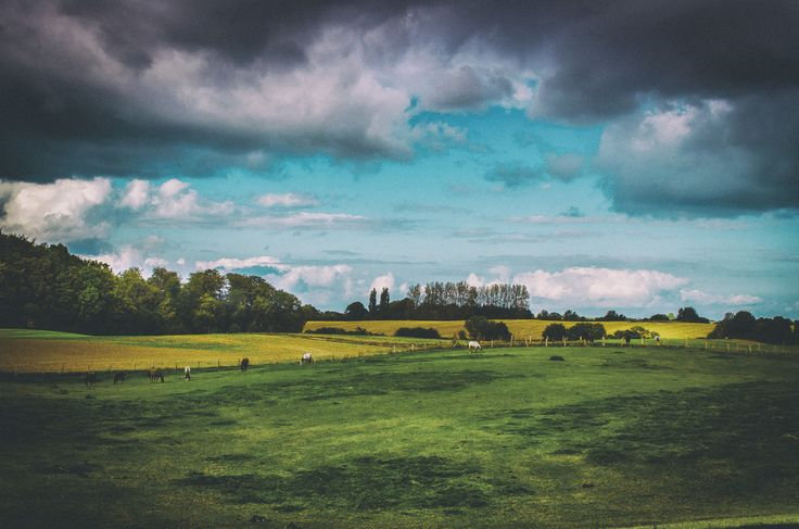 In the Countryside by Jens Krüßmann on 500px