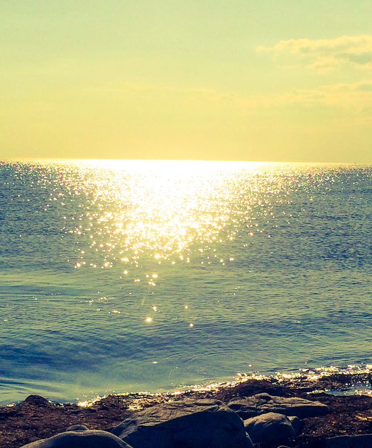 Sunny oscean