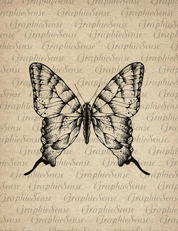 Butterfly - Old Encyclopedia Illustration - Printable Graphics Digital Collage Sheet Image Download Transfer An99