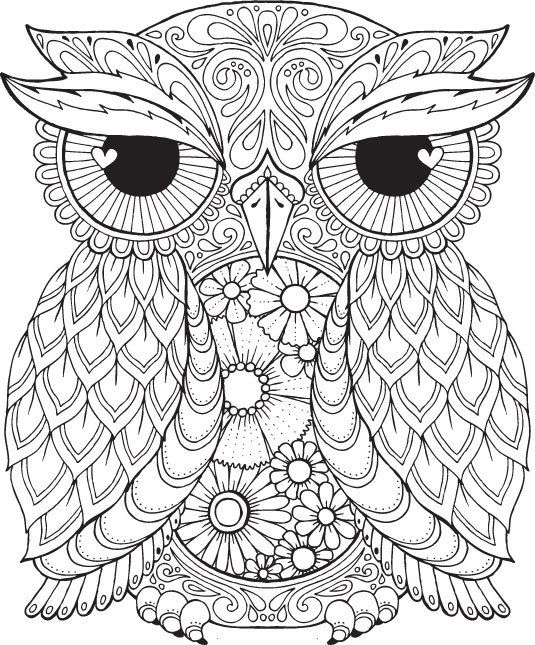 Seth Owl - Colour with Me HELLO ANGEL - coloring, design, detailed, meditation, coloring for grown ups, owl, cute colouring for kids