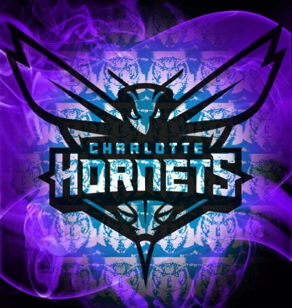 162 Best Images About Charlotte Hornets