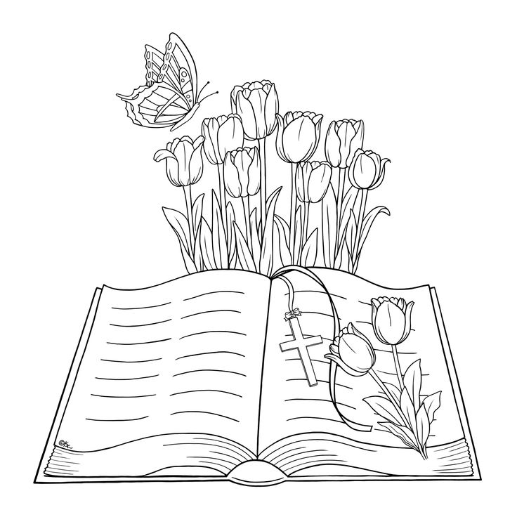 423 best images about books on pinterest good books for Open bible coloring page