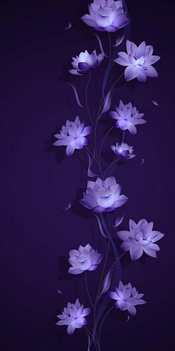 Pin By صورة و كلمة On لوني المفضل Purple Things Flower Iphone Wallpaper Flower Background Wallpaper Flower Phone Wallpaper