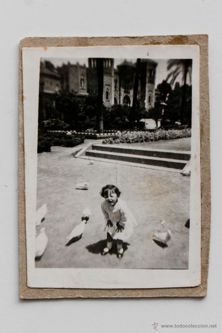 Niño asustado por las palomas en el Parque de María Luisa de Sevilla. Años 20/30 -  El Desván de Bartleby C/.Niebla 37. Sevilla