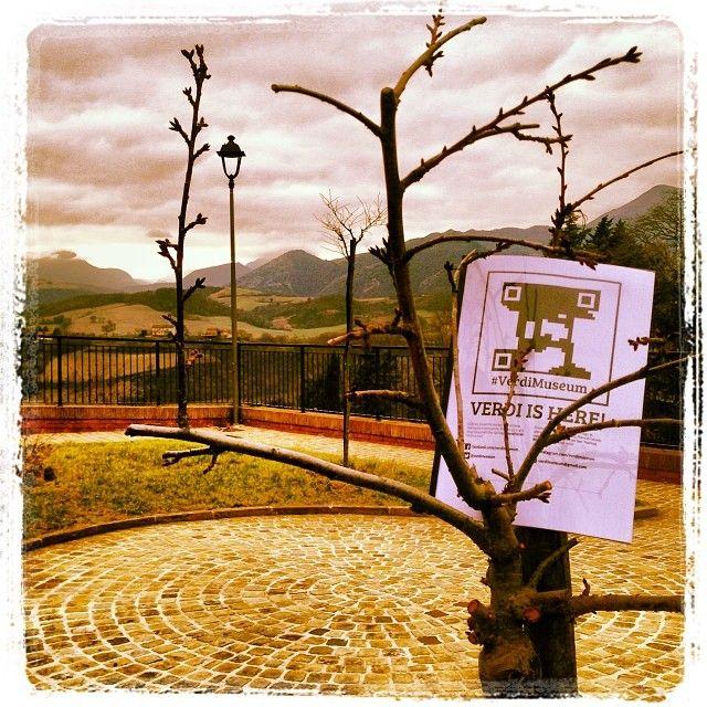 #foundverdi a #sassoferrato accanto alberi piantati per suoi bimbi dal @Georgia Mougopetrou Alfieri #verdimuseum #verdiishere #buonanno