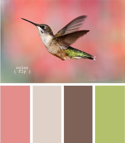 Color Palette picture ideas for 4 generations