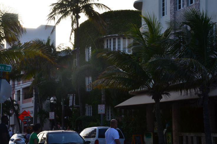 Miami - nuestra luna de miel