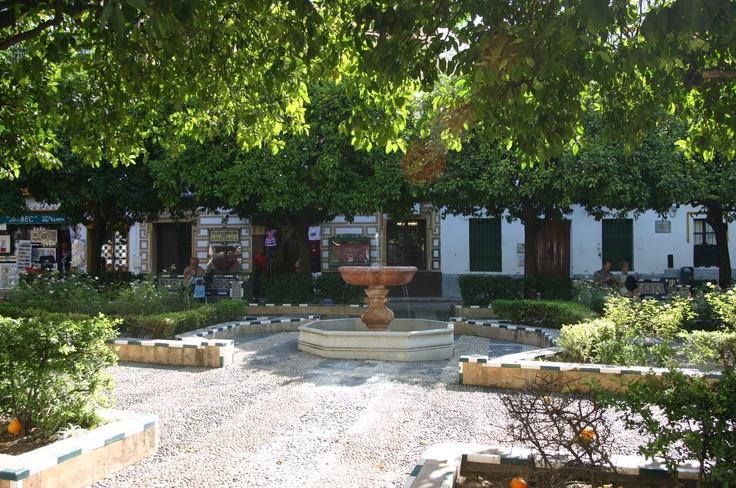 26 best Garden Spanish Revival Courtyard images on Pinterest ...