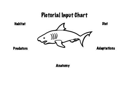 Shark Pictorial Input Chart from Teaching Princess on TeachersNotebook.com -  (1 page)  - Use this pictorial input chart to review important information about sharks, such as their diet, habitat, and adaptations. You can use this chart to review this animal in its natural habitat.