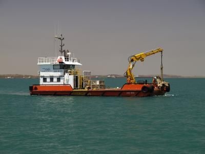AMS Boss - TAMS For more details, visit:http://seacogs.com/Vessels/Vessel?ID=142 #workboat #multipurpose #SEACOGS #TAMS