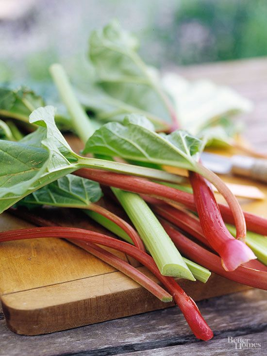 Planted rhubarb and the stalks haven't turned green yet? Find out when and if they will with this handy guide.