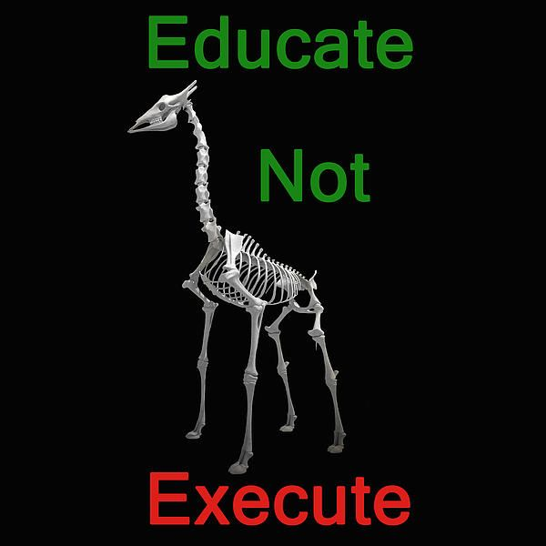 Educate Not Execute,T Shirts & Hoodies. ipad & iphone cases