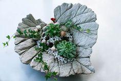 Als Vorlagen dienten mir hierzu ein Rhabarberblatt und ein Kürbisblatt. Ich habe sie mit Efeu, Hauswurz und Stiefmütterchen bepflanzt. Darüb
