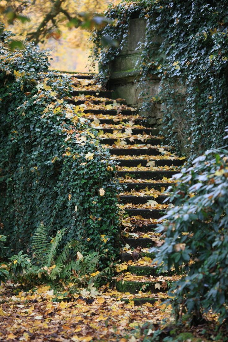 Stairs in the Fall