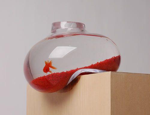 teetering fish tank