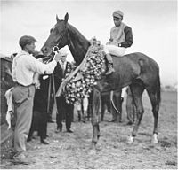 Judge Himes | Winner of the 29th Kentucky Derby | 1903 | Jockey: H. Booker | 6-Horse Field | $4,850 prize