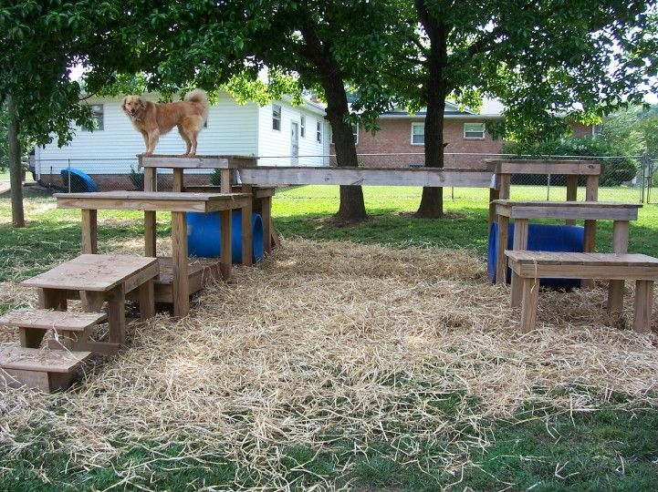 Dog Backyard Playground Ideas : Dog playground, Playgrounds and Playground ideas on Pinterest